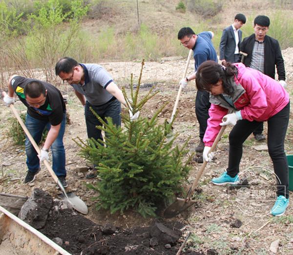 省统计局深入福洞镇民光村开展植树活动